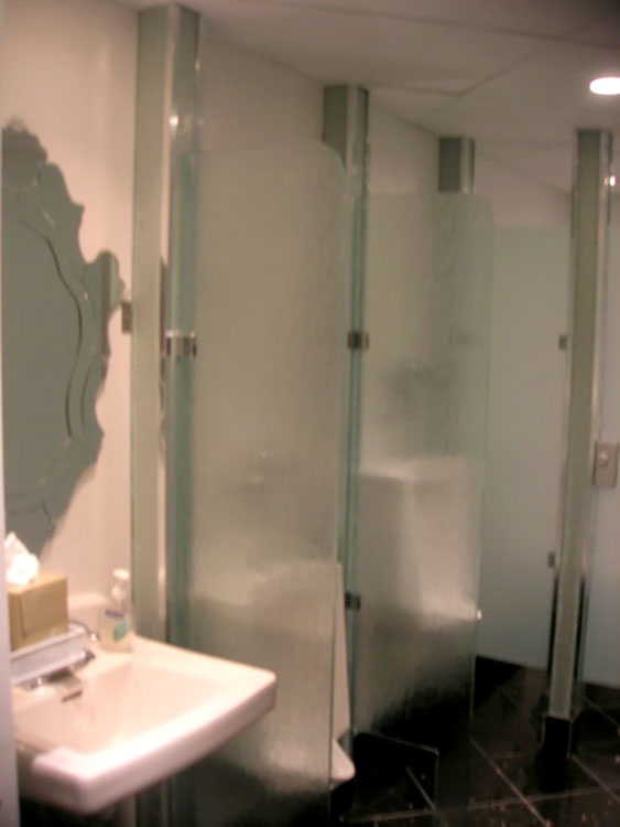 CUSTOM GLASS DESIGN CHICAGO - Custom bathroom partitions